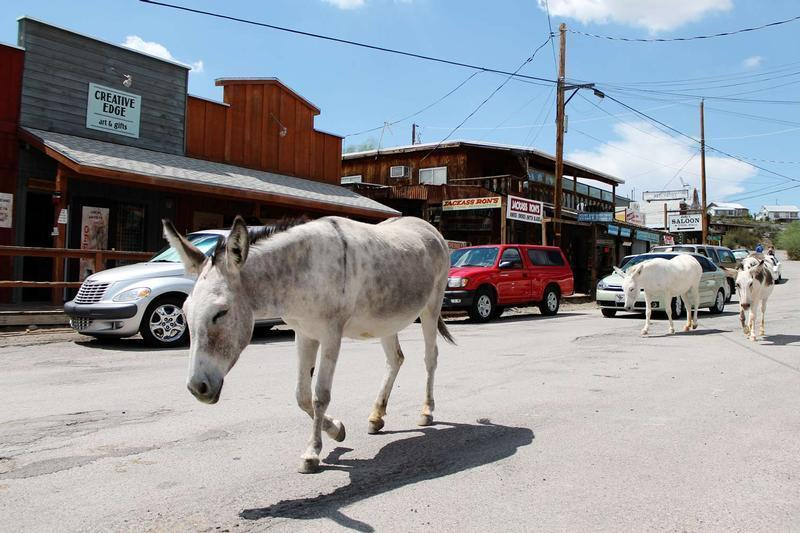 4 Facts about Oatman